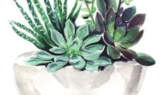 Quadros/Posters para uma Decoração Minimalista Arte Pop, Succulents, Plants, Vintage, Home Budget Spreadsheet, Retro Decorating, Minimalist Decor, Frames, Telephone