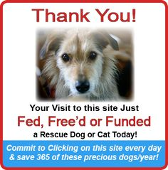 I will repost every so often to keep this clicked. Click on this site everyday and help animals in need. Costs the clicker nothing. Please help.