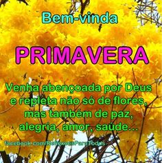 "Acesse: ""Colha mais flores"" Peace Love And Understanding, Peace And Love, Humor, Nara, Love Messages, Good Morning Wishes, Motivational Message, Happy Spring, Pictures"