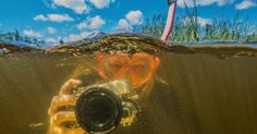 Students at Wis. treatment center find therapy, new worlds in underwater photography