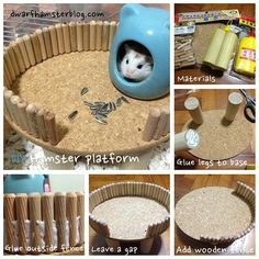 #DIY #hamster platform. Detailed #instructions at http://dwarfhamsterblog.com/diy-hamster-platform