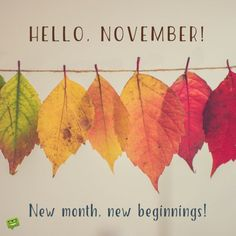 New month, new beginnings! November: that time of the year when we see Thanksgiving and Christmas coming. Our collection of images includes various moments and themes to share and spread. Hallo November, Welcome November, Hello January, Sweet November, November Month, November Images, November Quotes, Days And Months, Months In A Year