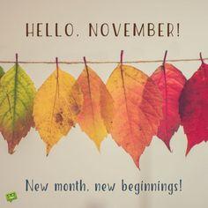 Hello, November!  New month, new beginnings!