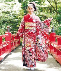 Kimono Furisode/着物 振袖