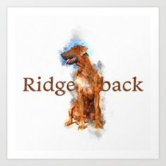 Collect your choice of gallery quality Giclée, or fine art prints custom trimmed by hand in a variety of sizes with a white border for framing. Rhodesian Ridgeback, Print Design, Fine Art Prints, Gallery, Frame, Picture Frame, Roof Rack, Art Prints, Frames