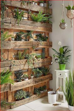 [Today and Tomorrow Only]=> if you're interested in Spring Garden Ideas, i'm with you. Many of us lose time to rework simple tasks over and over again because we don't know this trick. Click on the link to discover it now. It will not be here forever House Plants Decor, Plant Decor, Building A Fence, Shipping Pallets, Balcony Garden, Garden Walls, Diy Garden Decor, Garden Projects, Garden Ideas