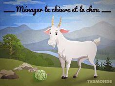 Ménager la chèvre et