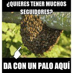 Imagenes de Humor Vs. Videos Divertidos - Mega Memeces #videosdivertidos #funnyspanishlessons