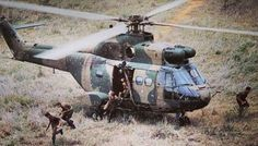 SAAF Puma Helcopter was a brilliant workhorse bringing in Soldiers Supplies. Sometimes under fire the pilots flying the Puma helicopters would fulfil. Military Helicopter, Military Aircraft, Augusta Westland, Airborne Ranger, South African Air Force, Chinook Helicopters, Army Day, Brothers In Arms, Defence Force