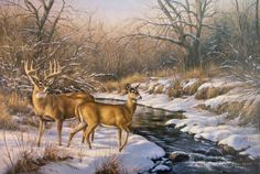 Buck And Doe - Desktop Nexus Wallpapers Painting Snow, Winter Painting, Painting Art, Winter Pictures, Wildlife Art, Deer Hunting, Wild Life, Animals Beautiful, Animals And Pets