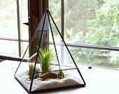 Terrarium Glass Pyramid Planter with Air Plant DIY Kit Desk Accessory Clear - 25 Elegant Diy Terrarium Kit Concept Terrarium Diy, Glass Terrarium, Glass Planter, Hanging Planters, Garden Planters, Casa Retro, Air Plants, Plant Decor, Diy Kits