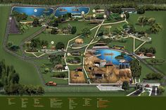 Brasília Zoológico
