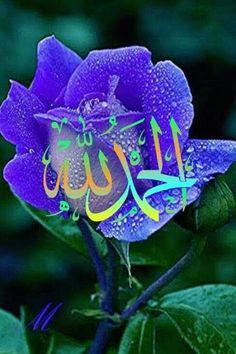 Alhamdulillah For Everything, Muhammed Sav, Hd Phone Wallpapers, Flowers Gif, Islamic Images, Sistema Solar, Good Morning Images, Allah, Star Wars