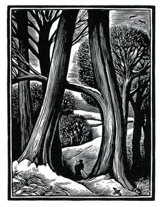 Chris Wormell >> Do like art like this, that gives us the contrast of the imposing size of nature against the small figure of a man. Woodcut Art, Linocut Prints, Art Prints, Block Prints, Gravure Illustration, Illustration Art, Scratchboard Art, Engraving Art, Linoprint