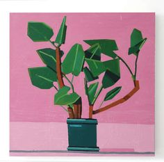 Alice Gallery - Domesticated Souls - Artwork - Guy Yanai - Plant on pink - 2012 - Oil on canvas - 80x80 cm