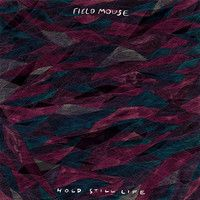 "Field Mouse - ""Everyone But You"" by Topshelf Records on SoundCloud"