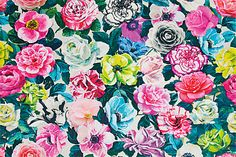 'Pavonia Pandora' fabric in Peony by Designers Guild   An explosion of bright colour sure to add personality to...