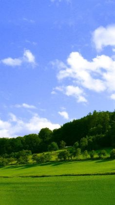 Nature Green Woodland And Blue Sky #iPhone #6 #plus #wallpaper