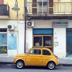 Fiat 500 by Genie Austin.