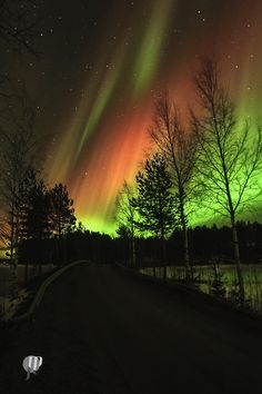 Photograph Auroras by JiiPee on 500px