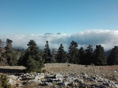 Parque Natural de la Sierra de las Nieves (Málaga)