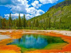 Osserva la splendida tavolozza di colori delle piscine termali nel Parco Nazionale di Yellowstone.