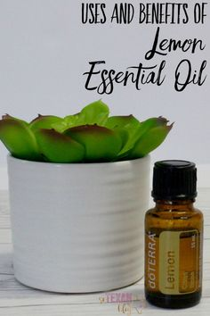 Lemon Essential Oil Uses and Benefits