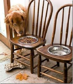 Reuse Idea: Old Chairs?   New Feeding Station for Big Dog!