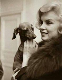 Marilyn & doxie