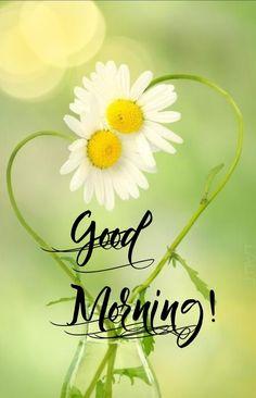 Good Morning Picture, Good Morning Good Night, Morning Pictures, Good Morning Images, Morning Greetings Quotes, Good Morning Messages, Good Morning Wishes, Boss Wallpaper, Heart Wallpaper