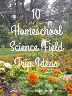 Looking for homeschool science field trip ideas? Here are ten unique field tips that are fun and educational for homeschool or traditional school. Research Lab, Children's Museum, Field Trips, Water Treatment, Walking In Nature, Science And Nature, Labs, Homeschool, Bakery