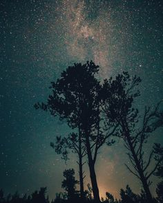 ryandevereuxphoto:  Forth Mountain Sky   #silhouette #trees...