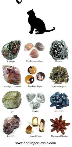 Dumortierite and Cat Animal Totem - Daily Crystal Nugget - Information About Crystals As A Healing Tool