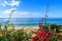http://www.itaka.pl/nasze-kierunki/wyspy-kanaryjskie/fuerteventura.html