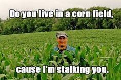 Do you live in a cornfield because i'm stalking you. Funny Pick-up lines Corny Pick Up Lines, Bad Pick Up Lines, Smile Pick Up Lines, Redneck Pick Up Lines, Clean Pick Up Lines, Terrible Pick Up Lines, Haha, Corny Jokes, Dad Jokes