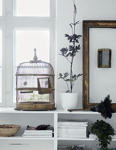 cage and golden vintage frame