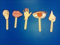 Imagini pentru organe de simt gradinita Senses Activities, Activities For Kids, Class Decoration, Human Body, Kindergarten, Education, Autism, Alphabet, Ms