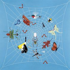 excellent design--Charley Harper