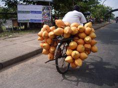 Kalutara auf Sri Lanka Sri Lanka, Fruit, Island, World, Viajes