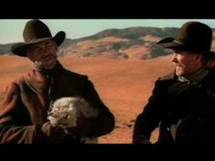 EDS - Cat Hearding | The 10 Best Superbowl Commercials Of All Time