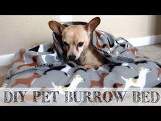 DIY 10 minute Pet Snuggle Bed | #DIYwithShaina - YouTube