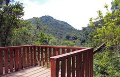 Continental Divide Look-Out in the Curi-Cancha Reserve #CostaRica   monteverdetours.com