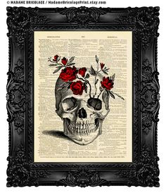 Cráneo lámina anatomía cráneo arte ilustración cráneo Collage cráneo pared decoración pared esqueleto Diccionario de arte Art Print esquelet...