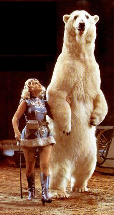 Ursula Böttcher, who trained polar bears to perform in circus acts, with one male bear in Potnia Theron, Ringling Brothers Circus, Sideshow Freaks, Circo Vintage, Clowning Around, Curious Cat, Wild Creatures, Arte Horror, Vintage Circus