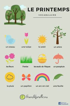 Learn French Videos Free Children French Videos Worksheets For Kids Post:. Learn French Videos Free Children French Videos Worksheets For Kids Basic French Words, French Phrases, How To Speak French, Learn French, French Language Lessons, French Language Learning, Learn A New Language, French Lessons, German Language