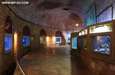 16. Catch a glimpse underwater at the Dubrovnik Aquarium and Maritime Museum