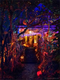 Amazing Halloween Outdoor Lighting Ideas For 2020 These trendy Halloween ideas would gain you amazing compliments. Check out our gallery for more ideas these are trendy this year. Halloween 2016, Outdoor Halloween, Halloween Horror, Diy Halloween Decorations, Halloween House, Holidays Halloween, Vintage Halloween, Halloween Parties, Halloween Witches