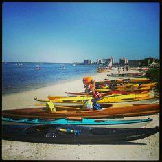 Kayaking in south west Florida ;)
