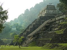 Palenque was a Maya city state in southern Mexico that flourished in the 7th century. The Palenque ruins date back to 226 BC to its fall around 1123 AD. After its decline, it was absorbed into the jungle, which is made up of cedar, mahogany, and sapodilla trees, but has been excavated and restored and is now a famous archaeological site attracting thousands of visitors.