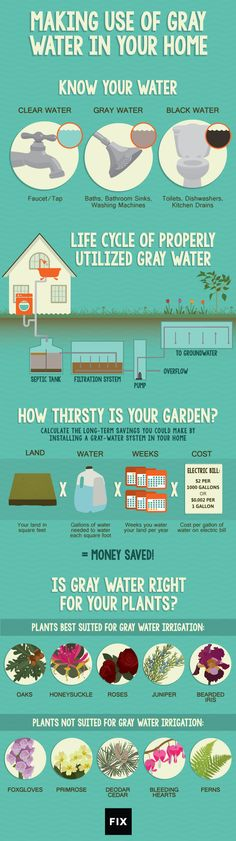 Making Use of Gray Water in Your Home #infographic #Water #GrayWater